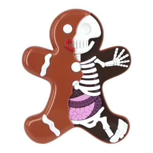 Dissected Gingerbread Man