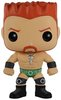 WWE - Sheamus POP!
