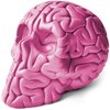 Skull Brain - PINK edition: Gloss nitro